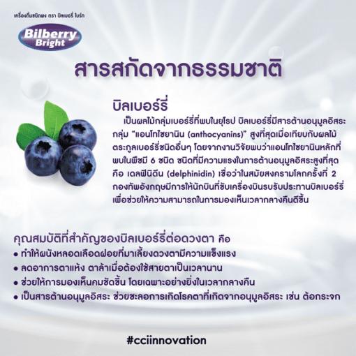 Bilberry Bright-