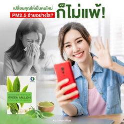Green mulon 004