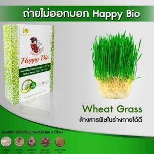 Happy Bio 004
