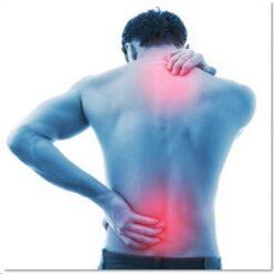 ปวดเข่า ปวดกล้ามเนื้อ ปวดกระดูก